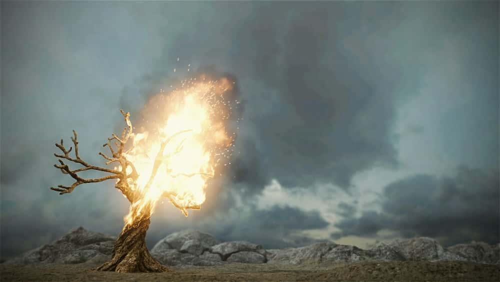 آموزش شبیه سازی یک درخت در حال سوختن در مایا