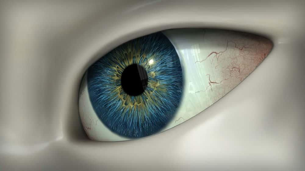 آموزش نقاشی چشم های واقع بینانه در MARI
