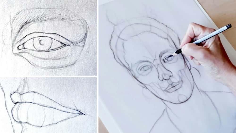 آموزش نقاشی شکل: پرتره