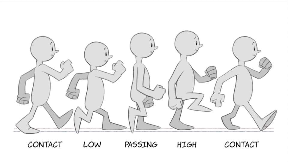 آموزش انیمیشن 2 بعدی: مبانی چرخه پیاده روی