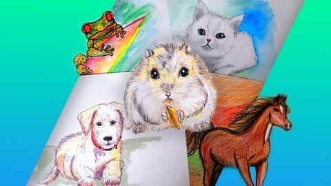 آموزش طراحی برای مبتدیان: یاد بگیرید که 8 حیوان را بکشید