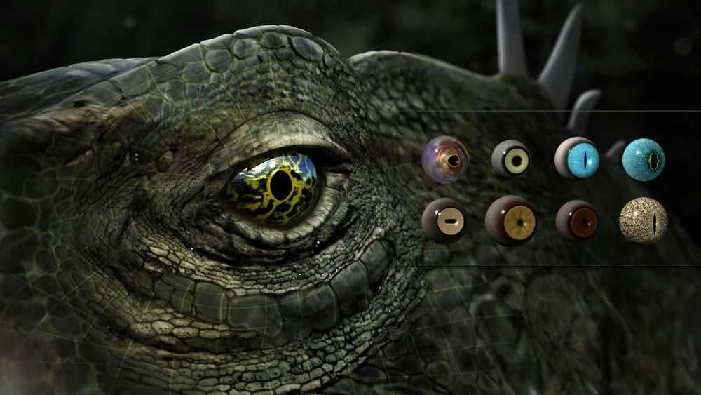 آموزش بافت چشم حیوانات در مایا