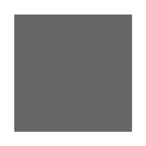 Whitesec online security organization